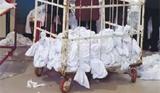 의료세탁물 관리 엉망